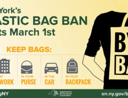 BAG BAN GOES INTO EFFECT MARCH FIRST